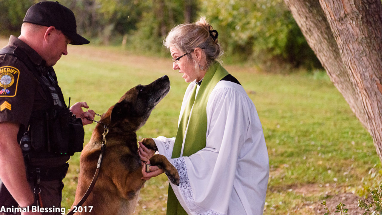 Blessing of the Animals 2017